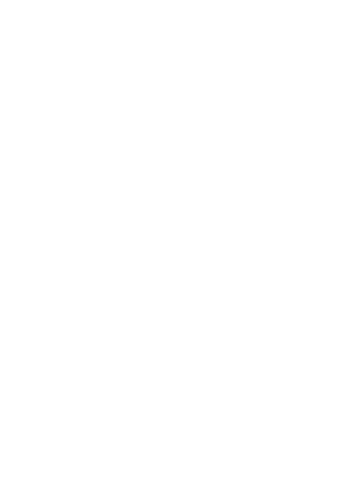 P.R.O Services   Business Establishment   Branding Solutions   Other Services